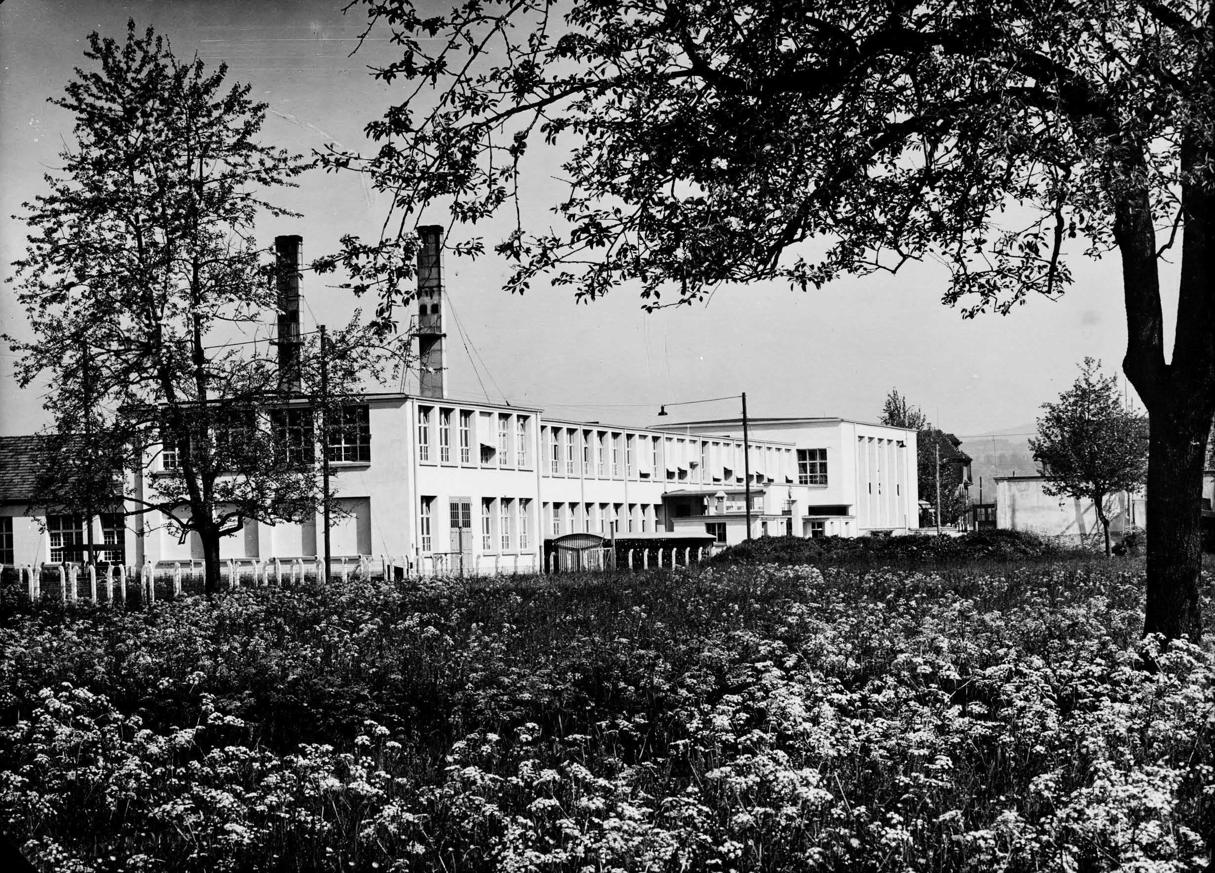 Neue Fabrik auf der grünen Wiese
